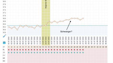 Basaltemperaturkurve: Schwanger?