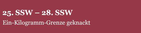 SSK-25SSW.jpg